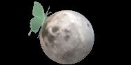 Lunar Eclose: Autoimmune Living